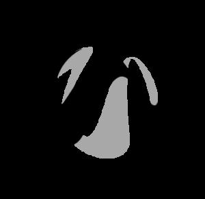 OPH rahoittaa hanketta logo
