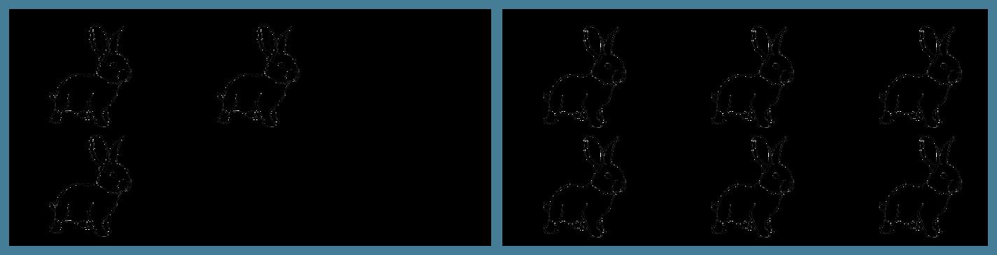 Vasemmalla aitaus, jossa kolme kaniinia. Oikealla aitaus, jossa kuusi kaniinia.